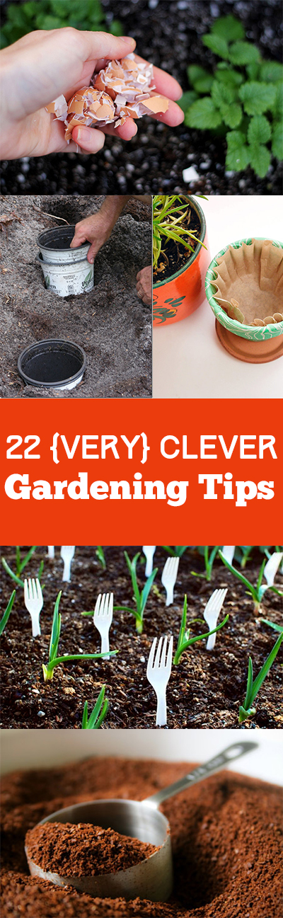 Gardening hacks, easy gardening tricks, clever gardening hacks, natural gardening, natural gardening tips, popular pin, natural pesticides.