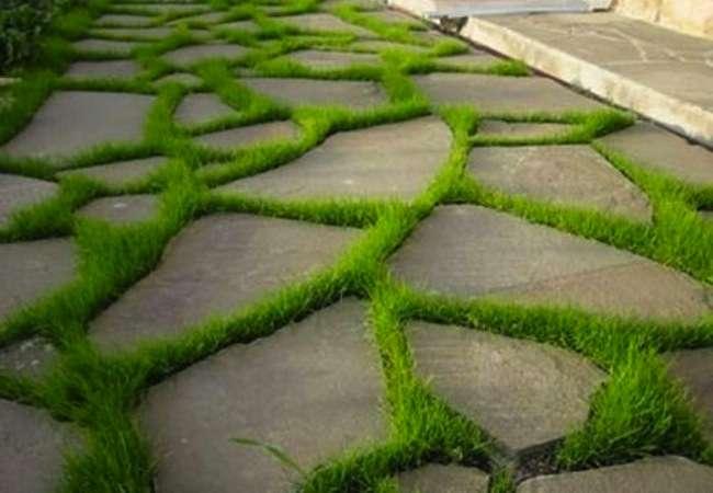 DIY Backyard Pathways| Backyard Pathway Ideas, Pathway Ideas, Backyard Ideas, Backyard Pathway Ideas DIY, Backyard Pathways Cheap, Outdoor Pathway Ideas, Outdoor DIY, OUtdoor Ideas, Yard Ideas, Yard DIY, Lanscaping Ideas #BackyardPathwayIdeas #PathwayIdeas #BackyardPathwayIdeasDIY #YardDIY #OutdoorDIY