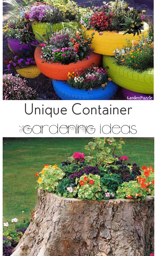Unique Container Gardening Ideas