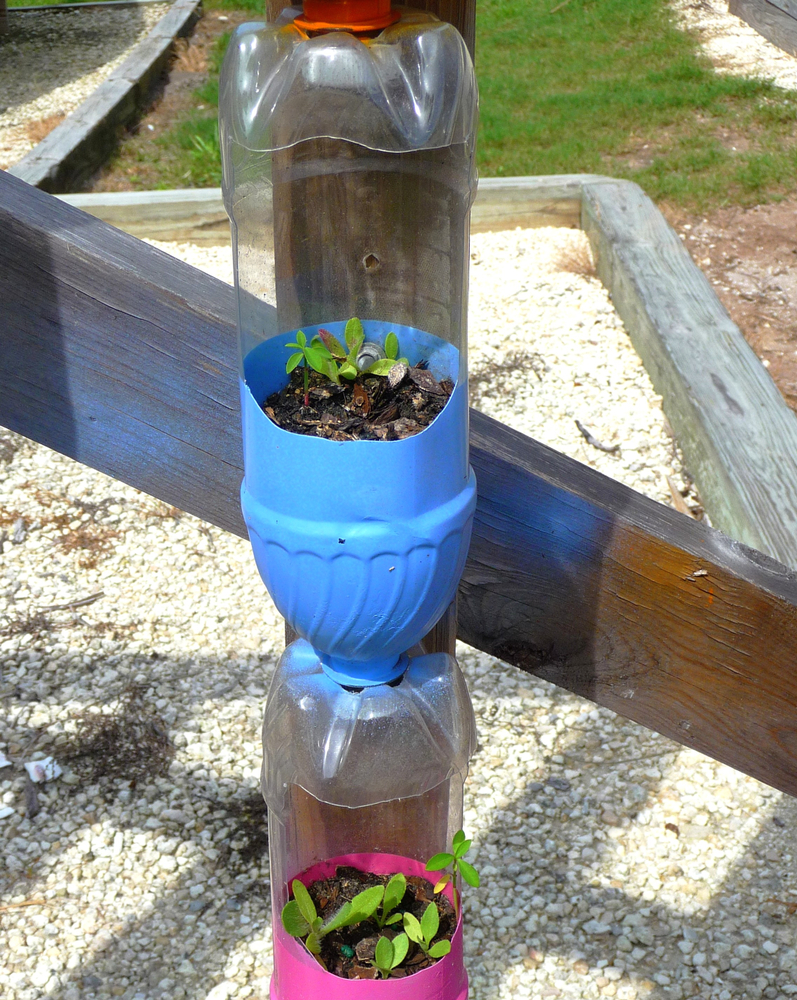 Here are 20 insanely clever gardening tips and hacks that make gardening easier. Try creating your own mini greenhouse!