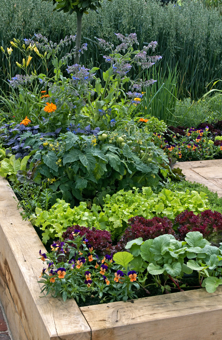 Here are 20 insanely clever gardening tips and hacks that make gardening easier. Try raising your garden beds for better drainage.