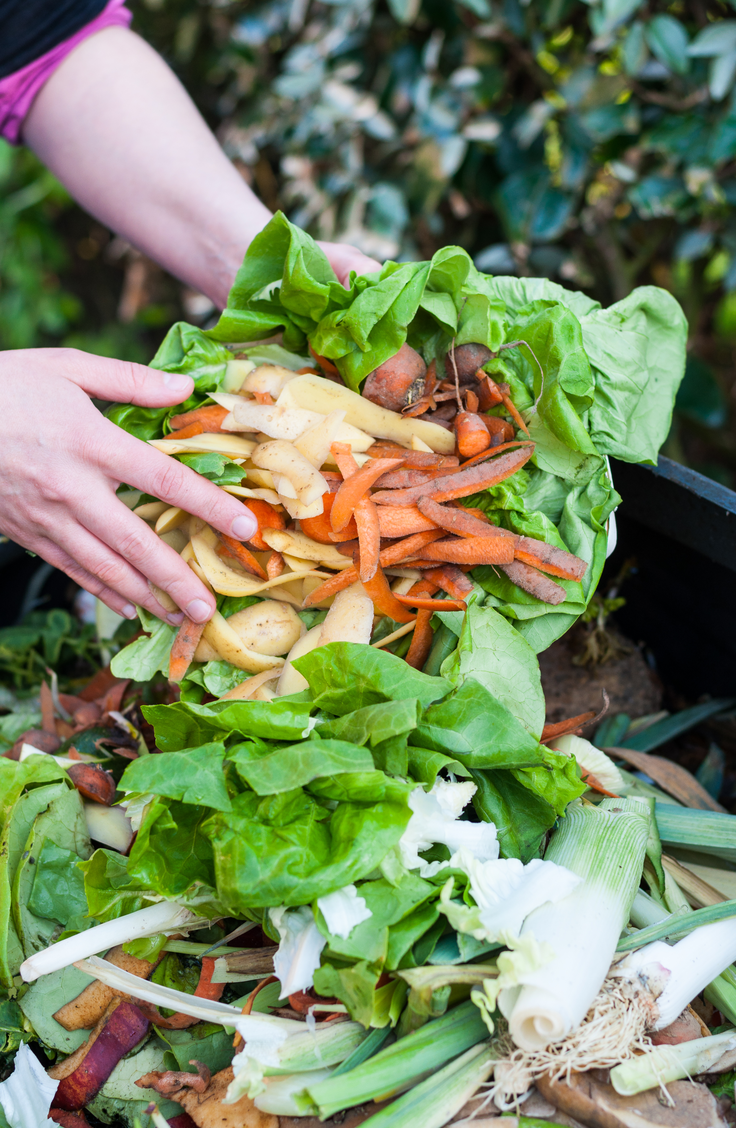 Here are 20 insanely clever gardening tips and hacks that make gardening easier. Try saving your fruit and veggie scraps to add to your compost.
