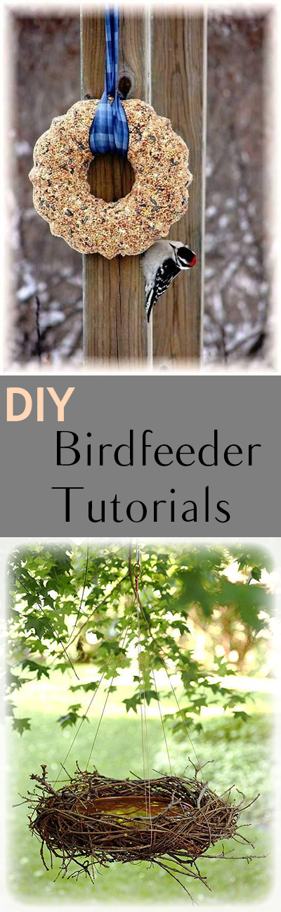 DIY bird feeder, bird feeder ideas, bird feeder, popular pin, outdoor living, porch decor, DIY porch decor