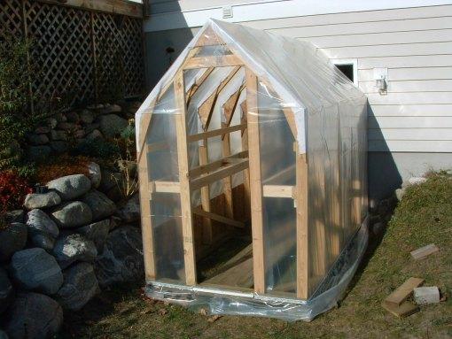 Greenhouse7