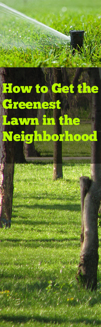 Lawn tricks, lawn tips, grass growing hacks, green grass tricks, outdoor living, landscaping, popular pin, yard and landscape