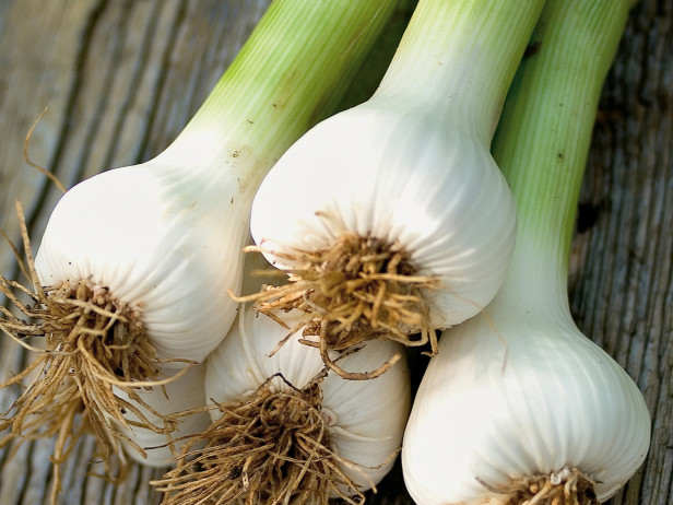 Don't worry anymore about those pesky bugs, try some of these mosquito repelling plants! You will love having garlic in your yard!