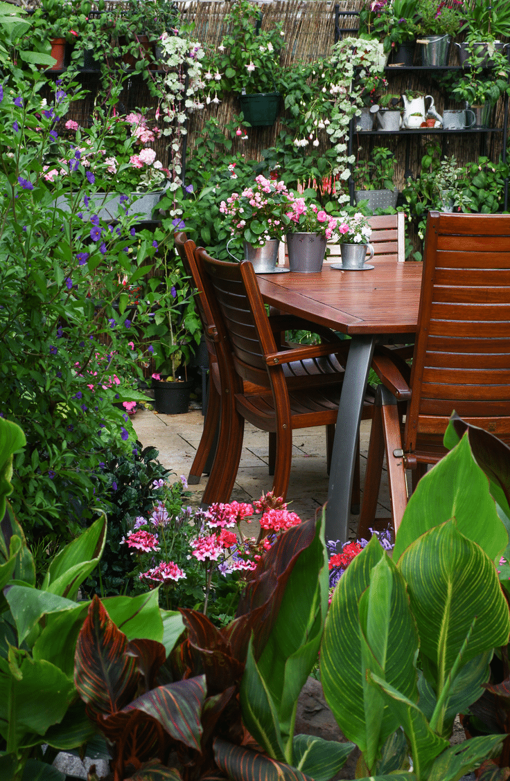 Surrounding your seating area with lots of greenery is a great way to make your backyard feel cozy. Here are 10 inviting backyard ideas for all types of gatherings.