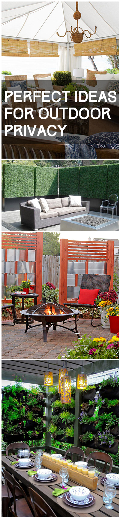 Outdoor privacy ideas, living fence, garden fence DIYs, popular pin, outdoor privacy hacks, yard updates, easy home upgrades.