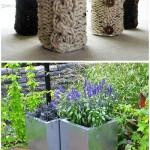 Unique Potting Plant Ideas