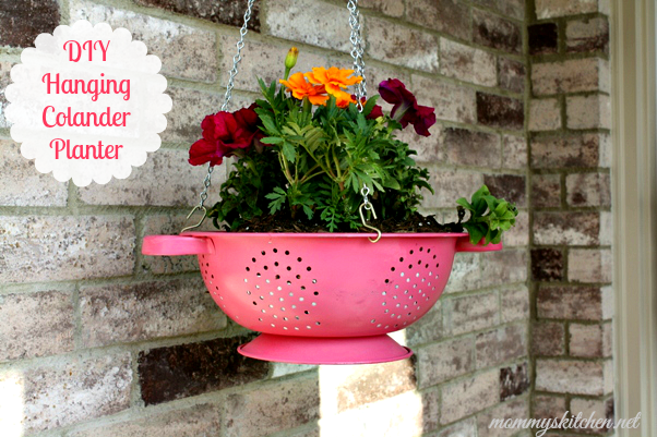 How To Make A Hanging Basket Flowers : Unique flower garden ideas page of bless my weeds