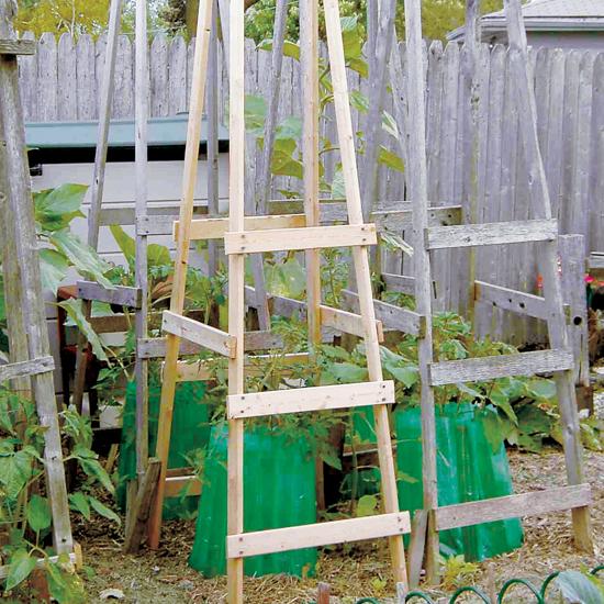 DIY Tomato Cage Ideas  Garden Ideas: Tomato Cages DIY, Tomato Cages Garden, DIY Tomato Cage, DIY Tomato Trellis, Garden Ideas, Gardening Ideas, Vegetable Garden Ideas, Vegetable Gardening Ideas