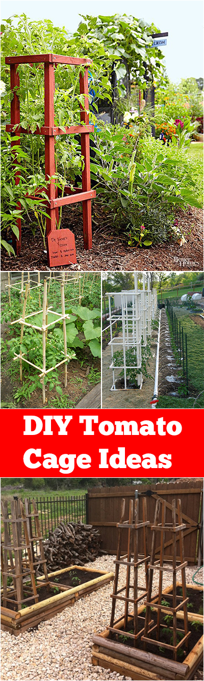 DIY Tomato Cage Ideas| Garden Ideas:  Tomato Cages DIY, Tomato Cages Garden, DIY Tomato Cage, DIY Tomato Trellis, Garden Ideas, Gardening Ideas, Vegetable Garden Ideas, Vegetable Gardening Ideas