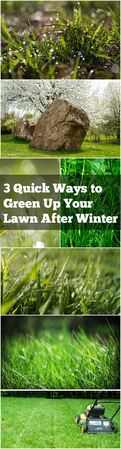 3 Quick Ways to Green Up Your Lawn After Winter| Lawn Care, Lawn Care Ideas, Landscaping Front Yard, Landscape Ideas, Landscaping, Landscaping on a Budget, Landscaping Back Yard #LawnCare #Landscaping, #LandscapeIdeas