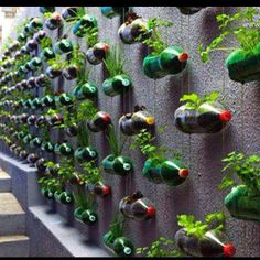 15 Creative Ways To Make An Herb Garden Page 4 Of 15