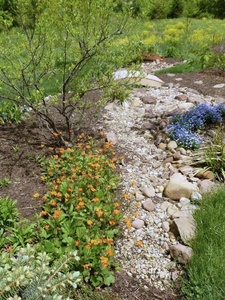 Dry creek beds, outdoor living, xeriscape ideas, popular pin, outdoor DIY, yard and landscape, landscaping hacks.