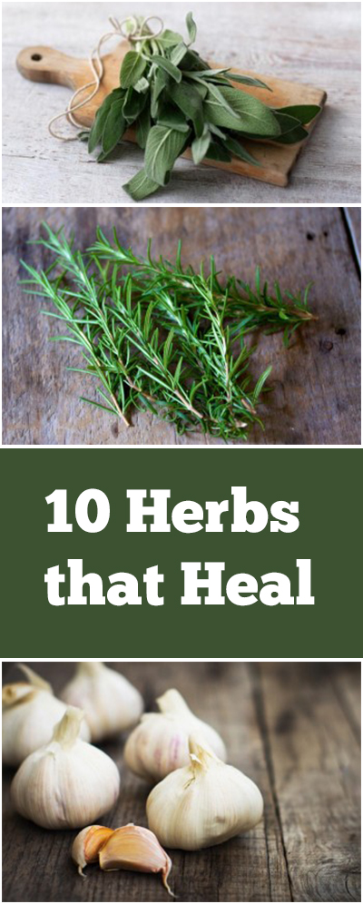 Herbs, herb gardening, herb gardening recipes, popular pin, things to do with herbs, recipes, gardening, gardening hacks.