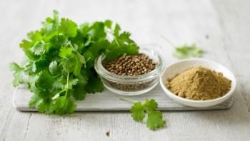 Herbs, herb gardening, herb gardening recipes, popular pin, things to do with herbs, recipes, gardening, gardening hacks.