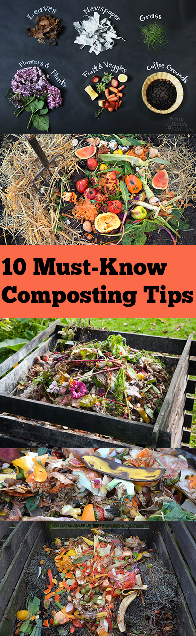 10 Must-Know Composting Tips