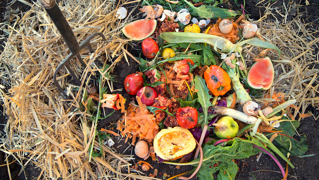 10 Must-Know Composting Tips10