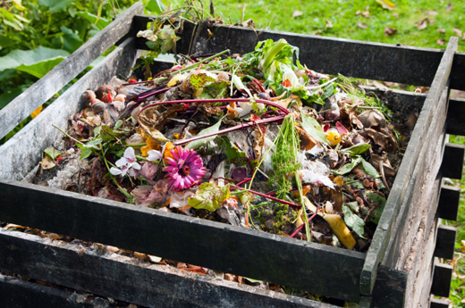 10 Must-Know Composting Tips5