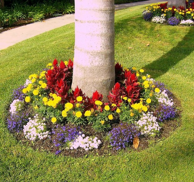 12 beautiful flower beds that will inspire page 12 of 13 for Beautiful flower beds