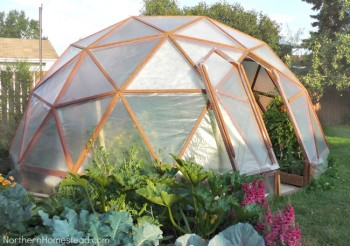 18 DIY Greenhouses14