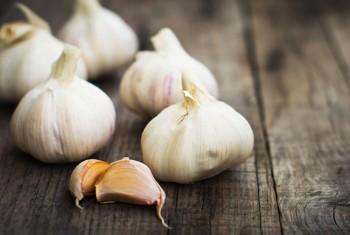 10 Herbs That Regrow9