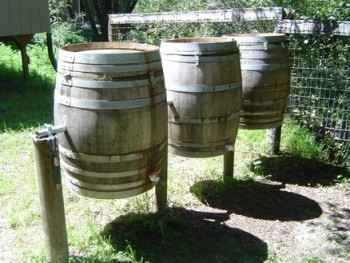 Compost, composting tips, composting ideas, popular pin, DIY compost, gardening, gardening hacks, composting hacks, garden tips.
