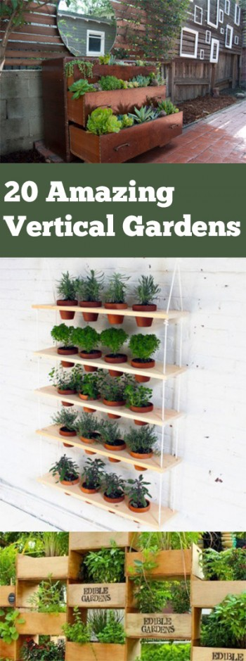 20 Amazing Vertical Gardens