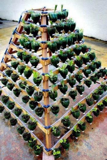 20 Amazing Vertical Gardens15