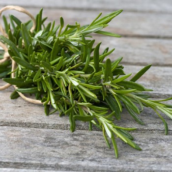 Grow herbs in water-rosemary