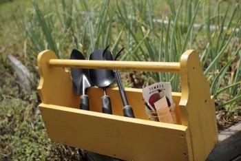 One day gardening, easy gardening DIY, DIY, gardening hacks, popular pin, outdoor projects, gardening tips, gardening DIYs..