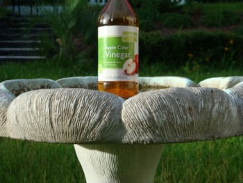 12 Ways Vinegar with Save your Garden12