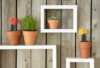 Outdoor living, fence ideas, fence decorations, outdoor decor, DIY decor, gardening, popular pin, outdoor DIY projects.
