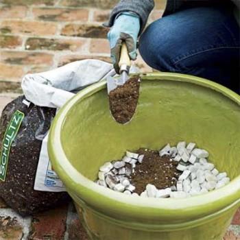 Frugal gardening, frugal gardening hacks, gardening tips, cheap gardening, cheap gardening hacks, popular pin, easy gardening, gardening hacks, DIY garden, outdoor living.