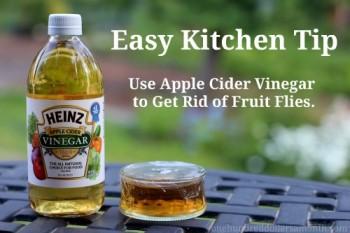 12-unbelievable-ways-to-use-vinegar-in-your-garden12