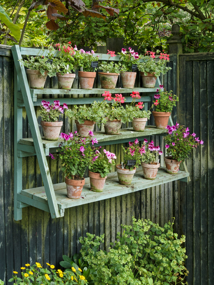 Hang shelves along your fence to add dimension, color and style to the fence surface. Here are some quick and easy ways to decorate your garden fence.