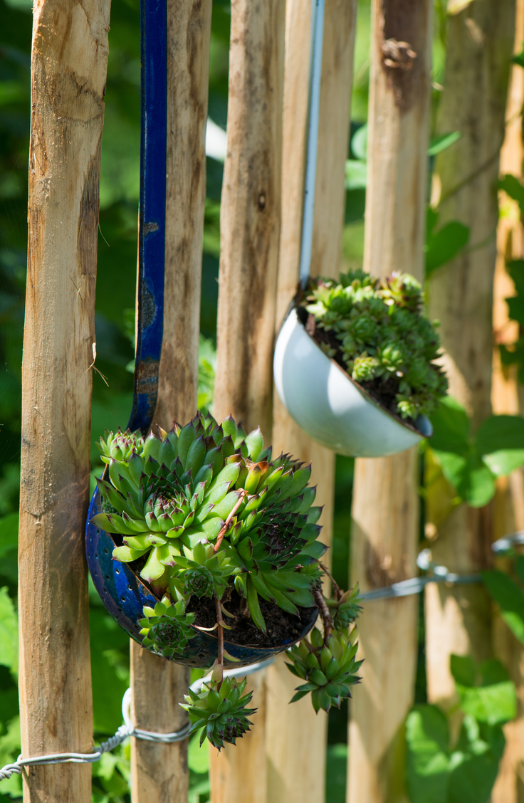 Make vertical gardens that you can hang from your fence. Here are some quick and easy ways to decorate your garden fence.