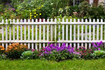10-ways-to-be-a-chemical-free-garden10