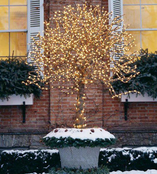 12-festive-container-gardening-ideas12