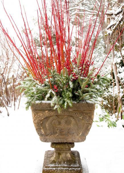 12-festive-container-gardening-ideas2