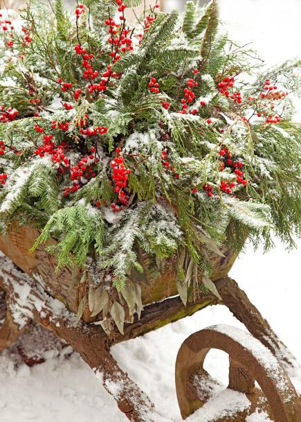 12-festive-container-gardening-ideas3