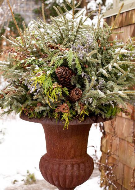 12-festive-container-gardening-ideas5