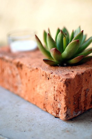 20-crazy-easy-one-day-gardening-diy-projects6