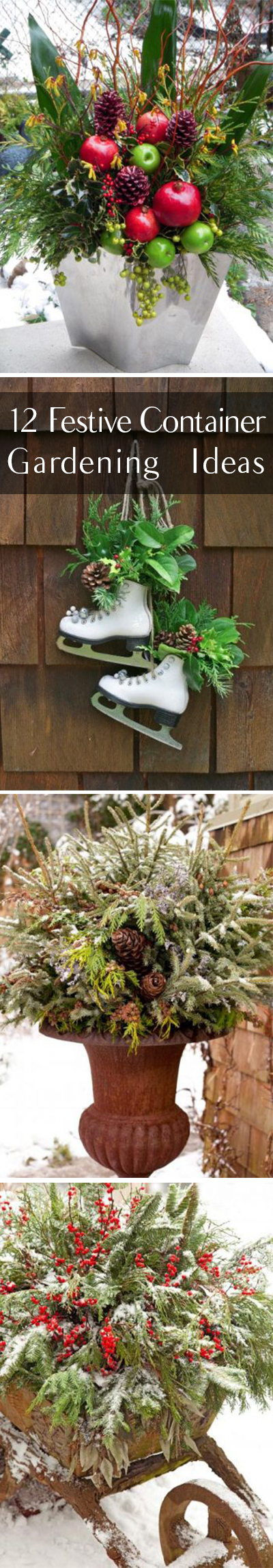 12-festive-container-gardening-ideas