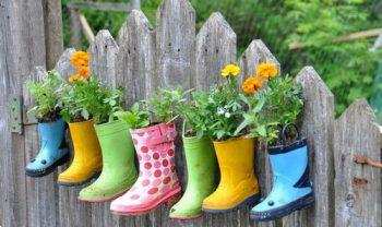 14-crazy-cool-vertical-gardening-ideas2