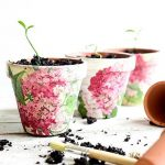 Terra Cotta Pots, Painting Terra Cotta Pots, Terra Cotta Pots, Terra Cotta Pot Crafts, Crafts, Easy Crafts, Simple Crafts, Gardening Projects, Upcycling Projects, Upcycling Projects for the Garden, Gardening, Gardening DIY, DIY Gardening Tips, Popular Pin