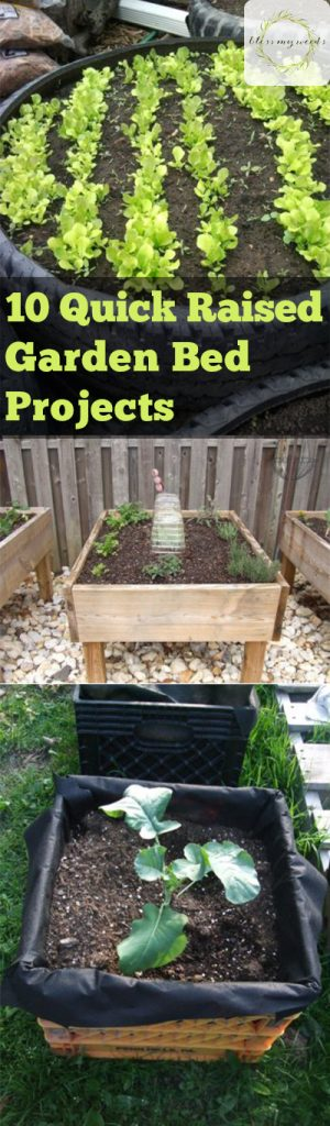 Raised Garden Beds, Easy to Build Raised Garden Beds, DIY Raised Garden Beds, DIY Outdoor Projects, Outdoor Projects, Gardening Projects, Quick Raised Garden Beds, How to Garden in A Raised Bed
