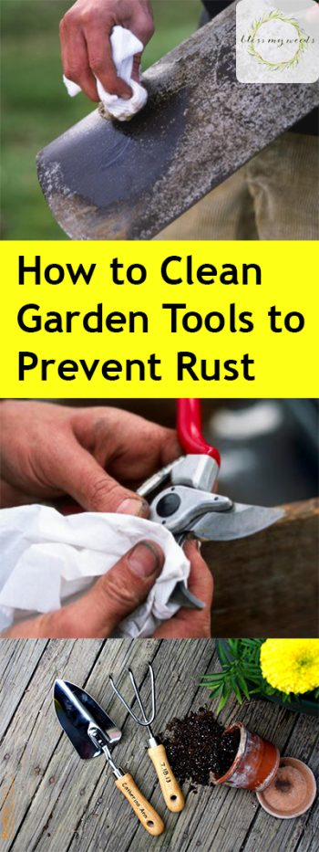 How To Clean Garden Tools, Easy Ways To Clean Gardening Tools, How To  Sharpen