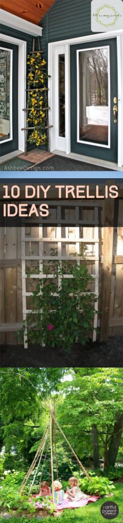 10 DIY Trellis Ideas - DIY Garden Trellis, Garden Trellis Ideas, Gardening Trellis Projects, Outdoor Projects, Outdoor DIY Projects, Handmade Garden Trellis, DIY Garden Stuff, Popular Pin